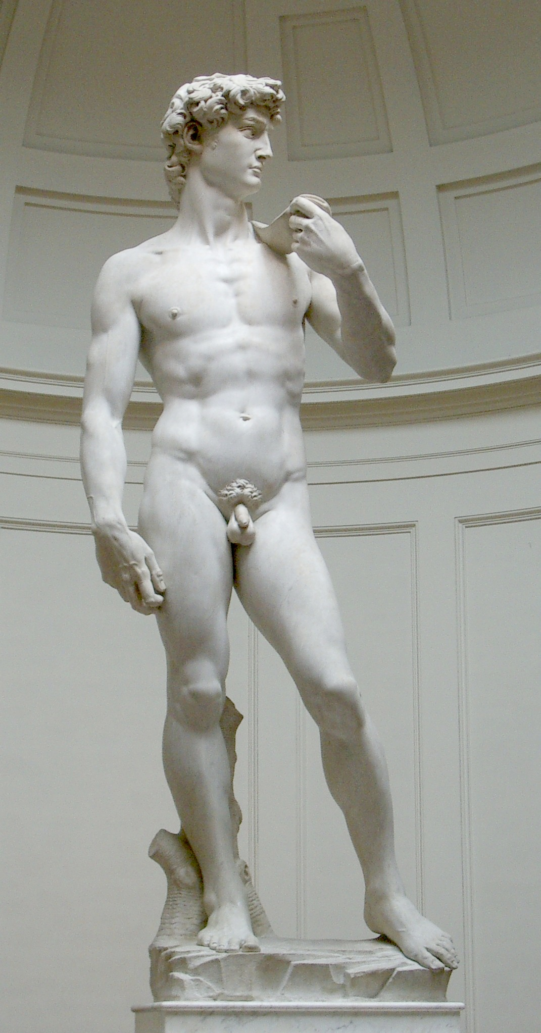 Michelangelo, David, 1501-1504, marble, 17', Galleria dell'Accademia, Florence, Photo by Rico Hell via Wikimedia Commons, Public Domain, Creative Commons Attribution-Share Alike 3.0 License.